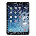 iPad Air Displayglas und Touchscreen Reparatur
